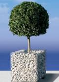 gabion planters and funinture