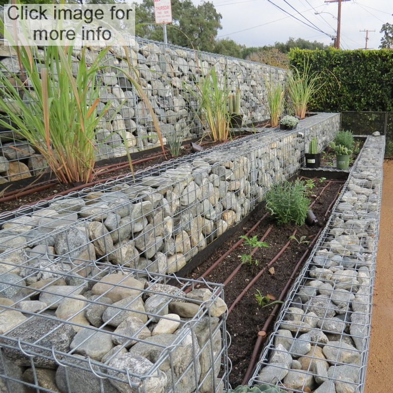 gabion retaining vegetable garden